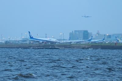 20100819 368.jpg
