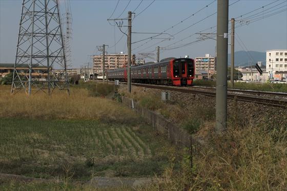 20101107 8421_R.jpg