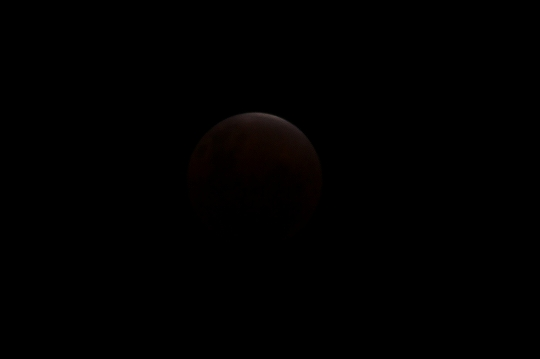eclipseofthemoon010.jpg