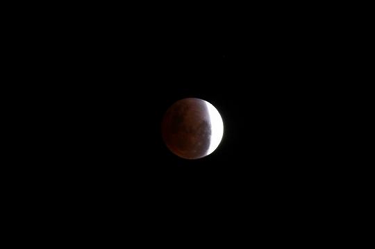 eclipseofthemoon016.jpg