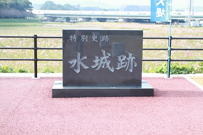 20101107 668.jpg
