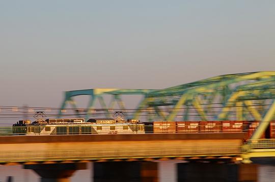 20120109_5D 084.jpg
