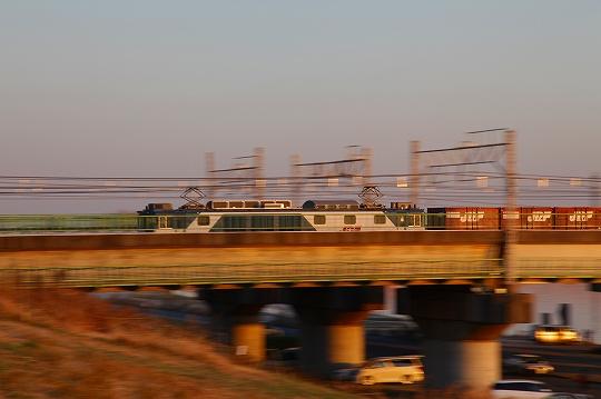 20120109_5D 089.jpg